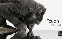 Gorilla Glass v Bořičích mýtů, GG4 na cestě