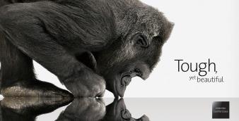 GorillaGlass_tutiendastore.es_